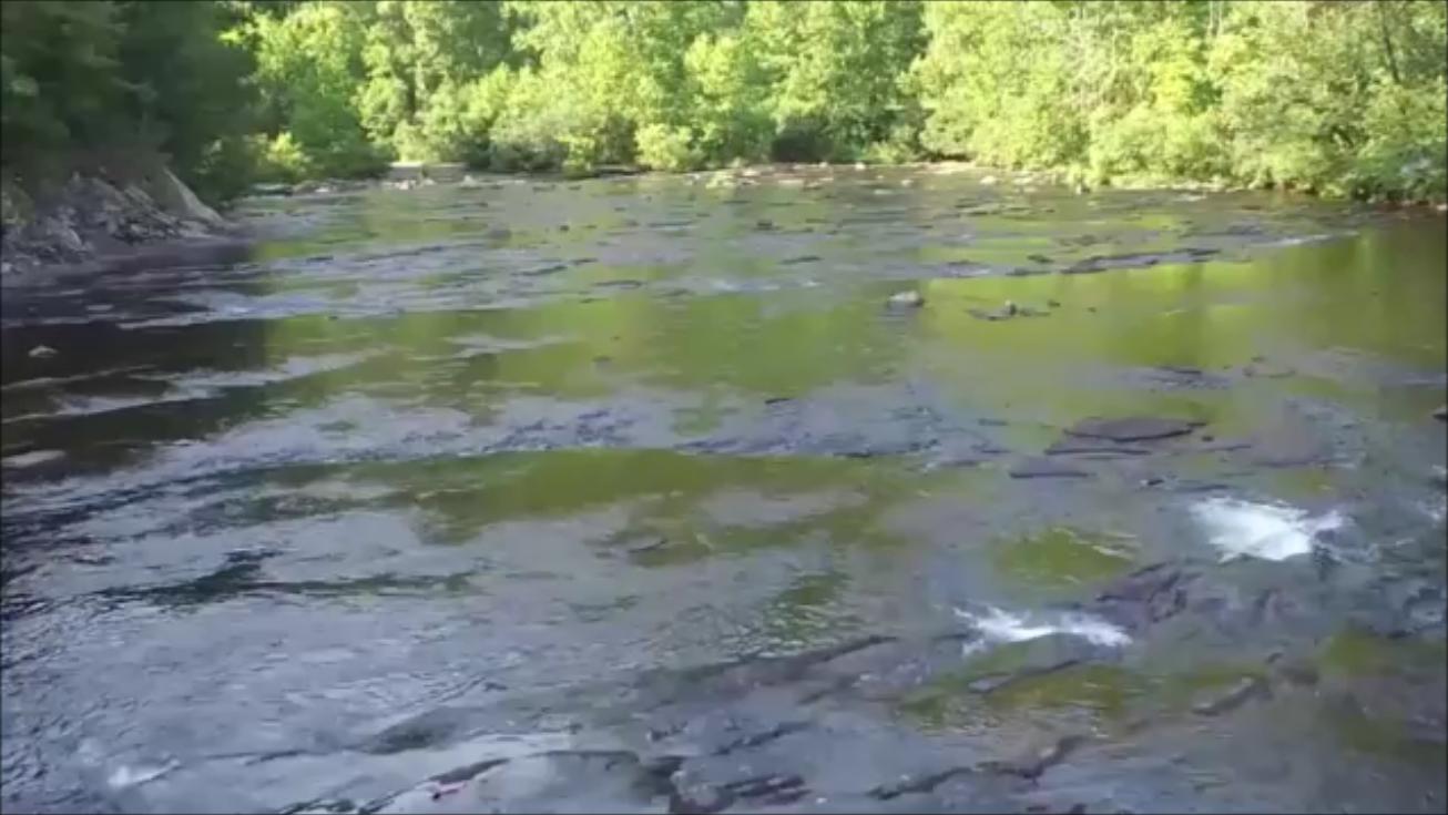 River Snapshot